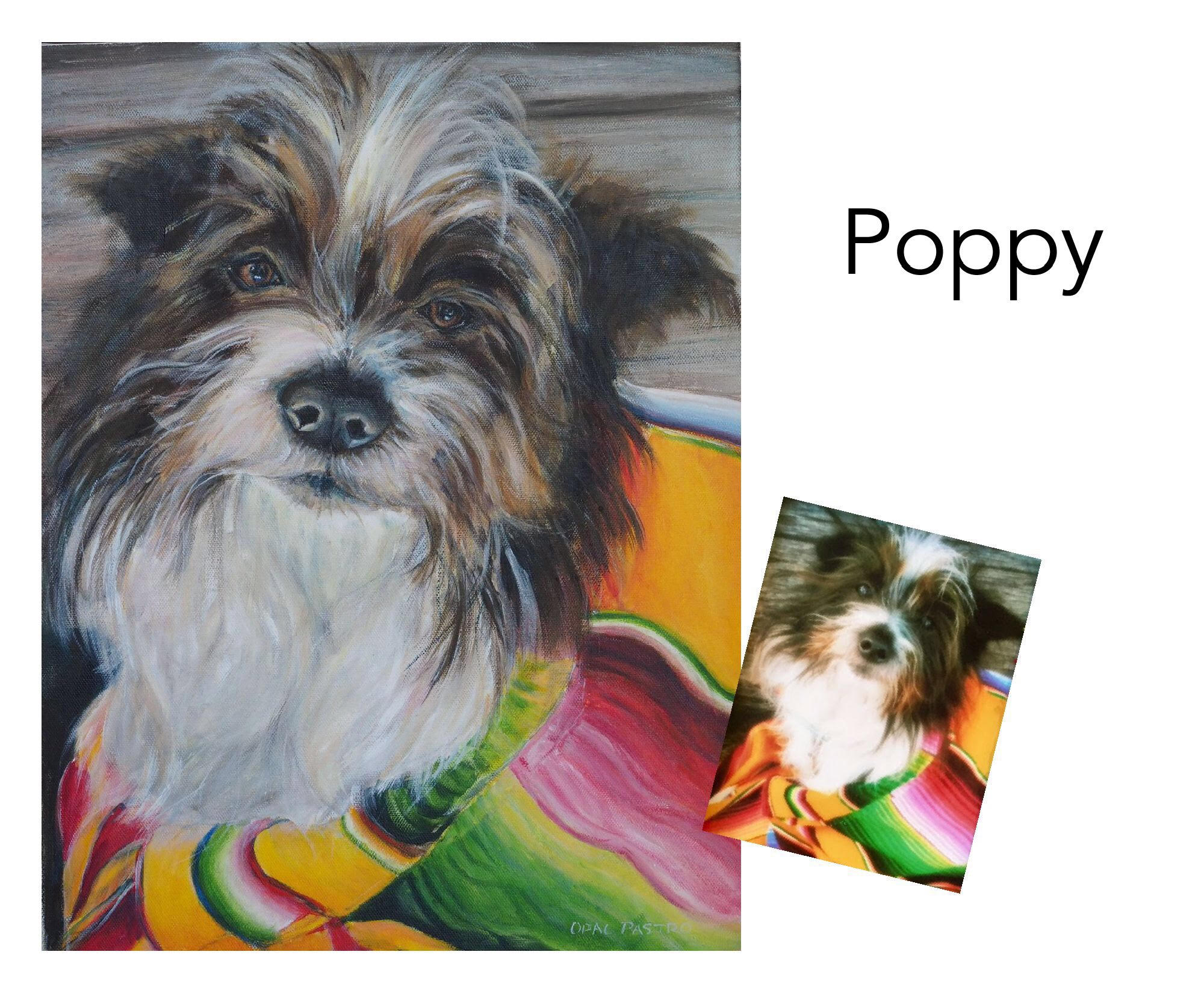 """Terrier mix - Acrylic on canvas 14"""" x 18""""  (35.5cm x 45.72cm)Memorial portraitBellingen, NSW——————————Poppy was a sweet little companion that left a giant hole in her mum's heart when she passed away. Like many memorial portraits, clear photos were not available, but I was able to create a painting that captured Poppy's lovely nature. Her mum adores Poppy's memorial portrait as she says it is as though she is still with her."""