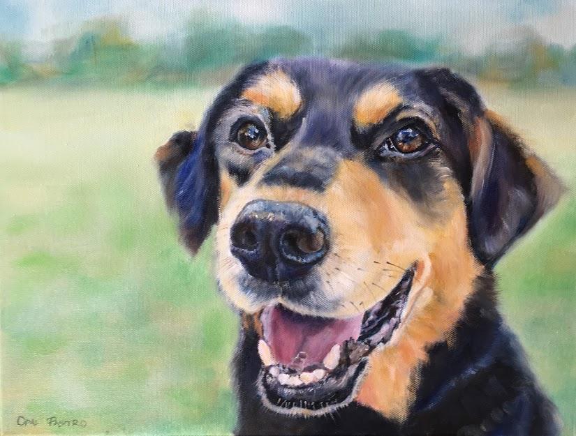 DOG RESCUE PAINTED PORTRAIT OF POPPY BY AUSTRALIAN PET PORTRAIT ARTIST OPAL PASTRO ART
