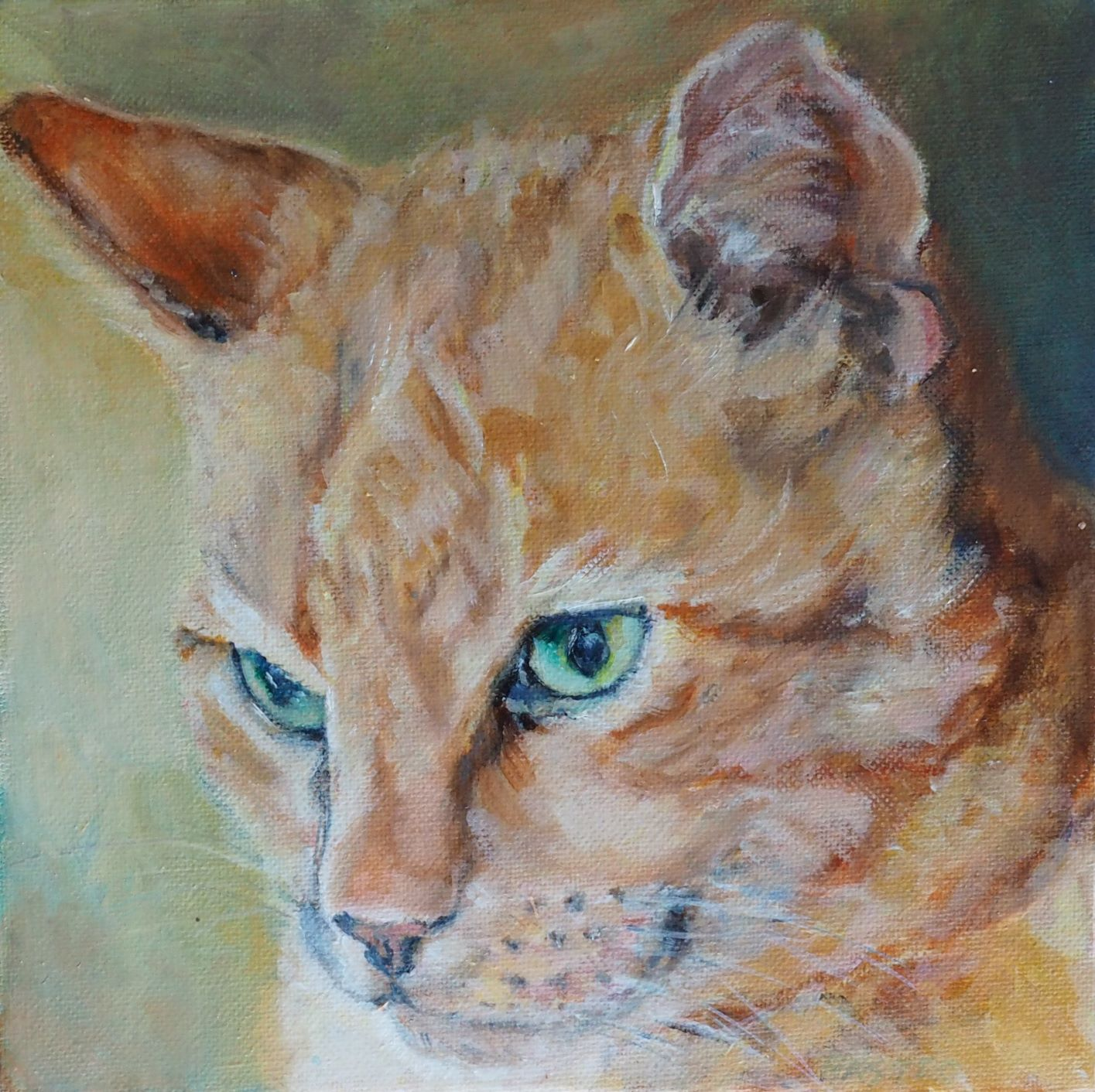 CAT PAINTING. GINGER TABBY BY OPAL PASTRO ART