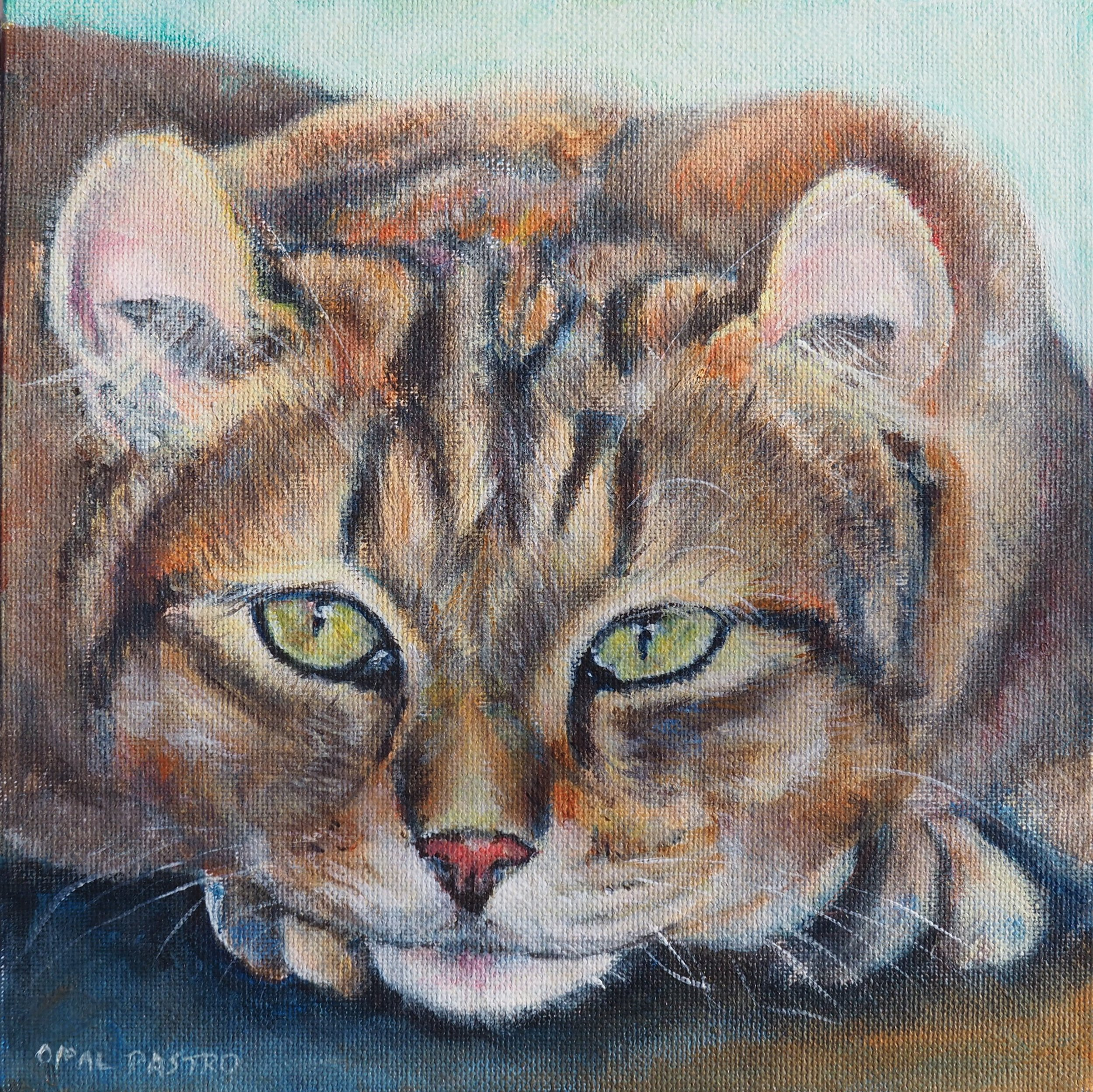 CAT PAINTING OF HIGHLAND LYNX BY OPAL PASTRO ART