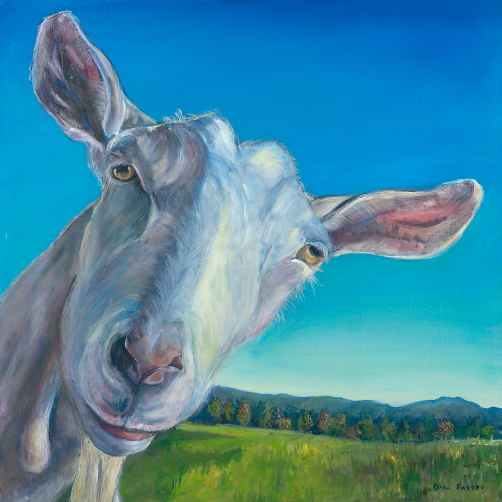 GOAT PAINTING OF WHITE GOAT IN LOVELY LANDSCAPE BY OPAL PASTRO ART