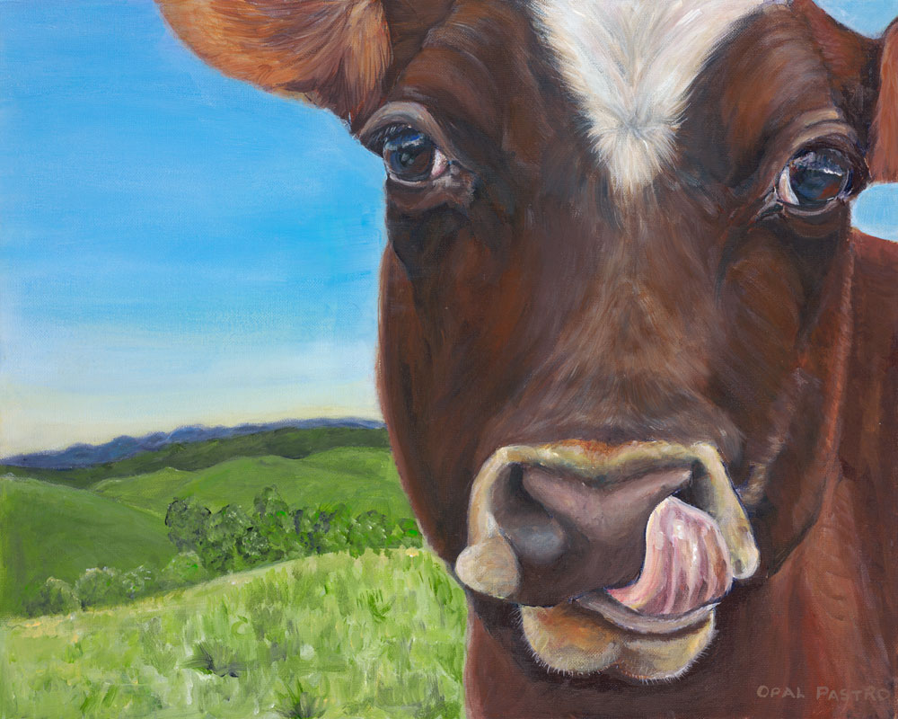 COW PAINTING OF BROWN COW LICKING HER NOSE BY OPAL PASTRO ART