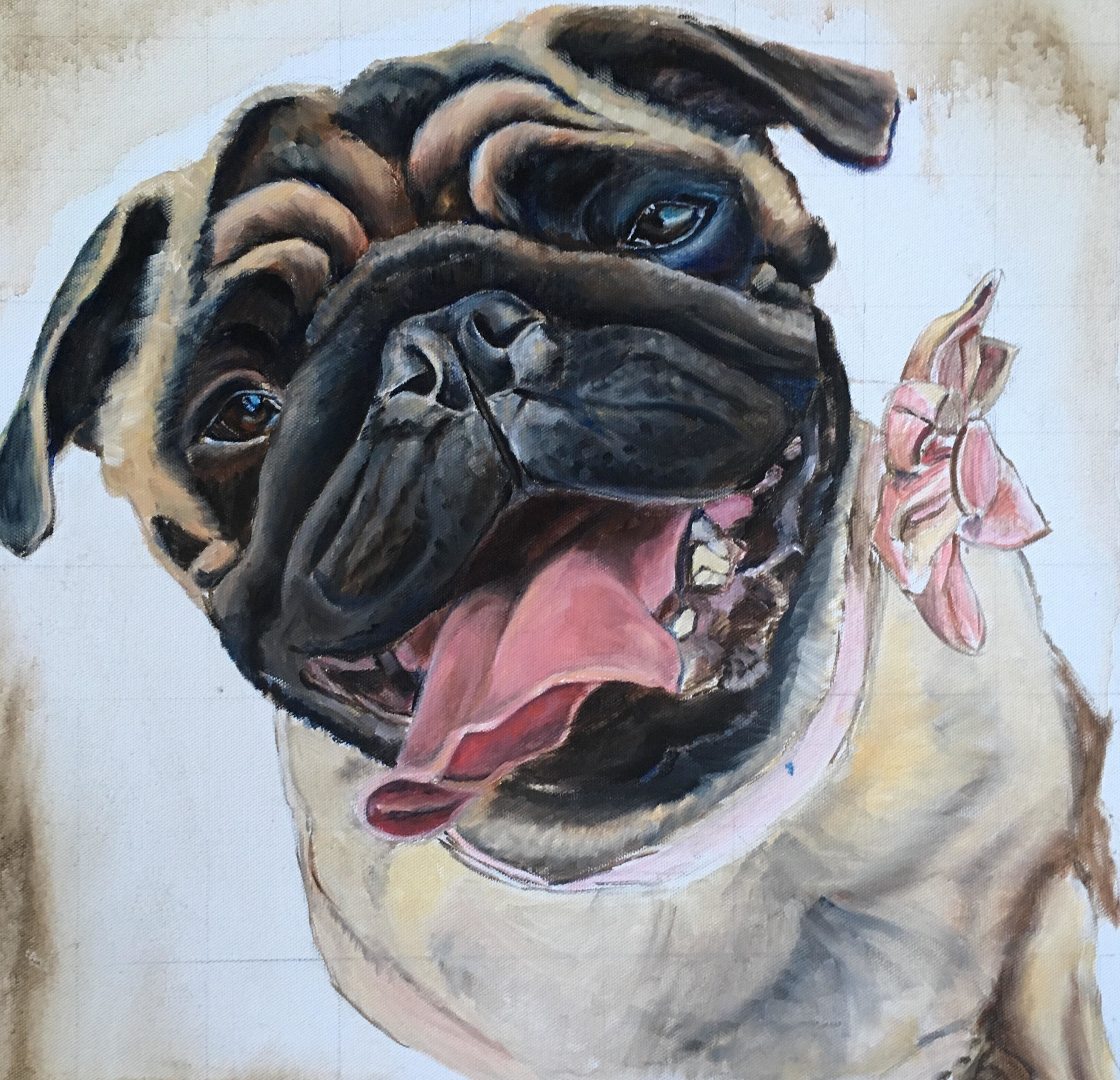 PUG DOG UNDER PAINTING 2. CUSTOM PORTRAIT BY OPAL PASTRO ART