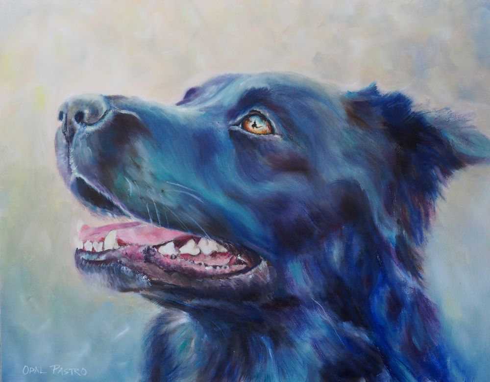 DOG PAINTING OF BLACK KELPIE MIX BY OPAL PASTRO ART