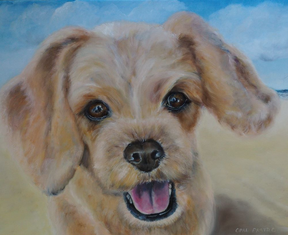 DOG PAINTING OF CAVOODLE AT THE BEACH BY OPAL PASTRO ART