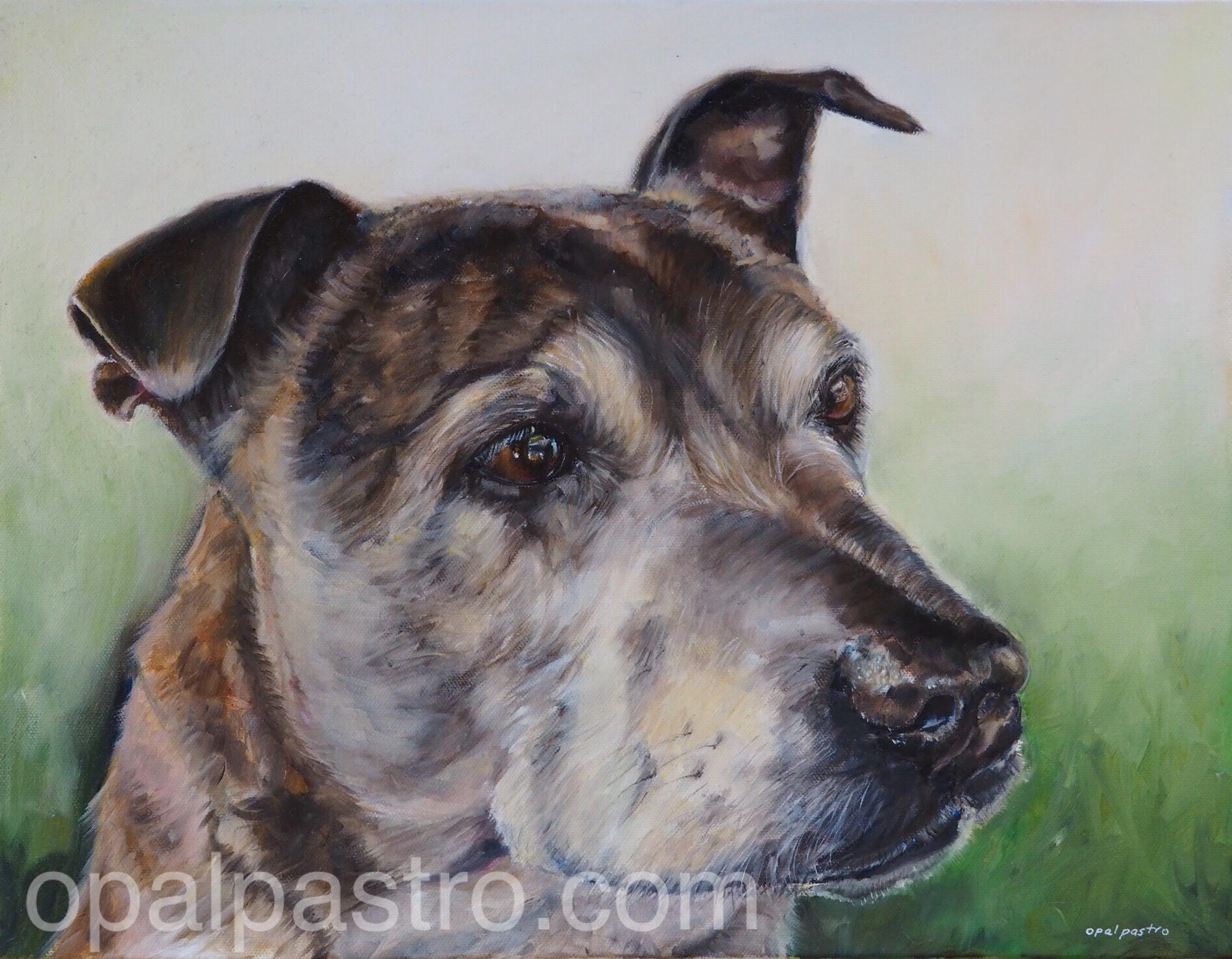 Final pass - And here is the lovely Frank's portrait.Final layer painted in water soluble oils (Windsor and Newton Artisan)