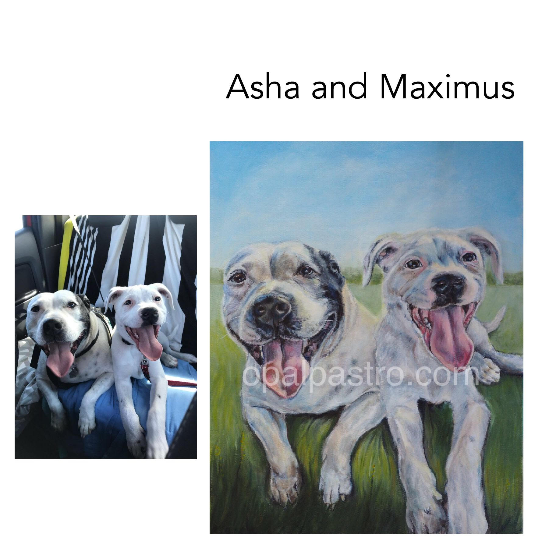 """Staffy - Acrylic on Canvas, 14"""" x 18"""" (35.5cm x 45.72cm)Private commissionRepton, NSW—————————————-Asha started her life with a very long time in the pound before she was rescued by her loving mama when she was about three years old. She is very loving but also needs lots of love.Maximus is a devine one year old with a heart of gold and a great companion to Asha."""