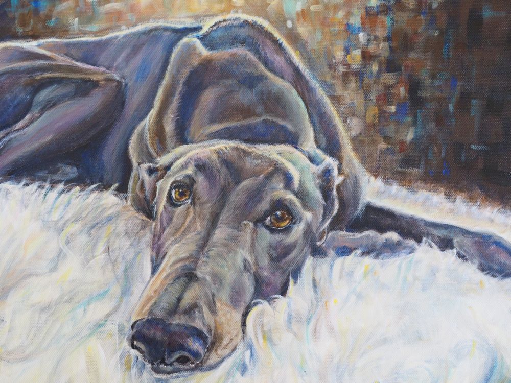 Custom portrait of Danny the rescue Greyhound by Opal Pastro