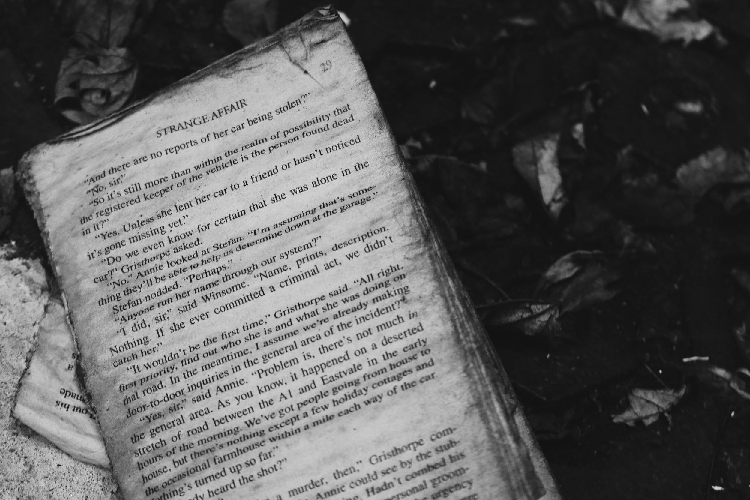 Stephen King's Post Apocalyptic Books -