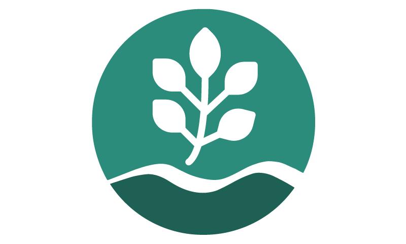leaf-icon-outline.png