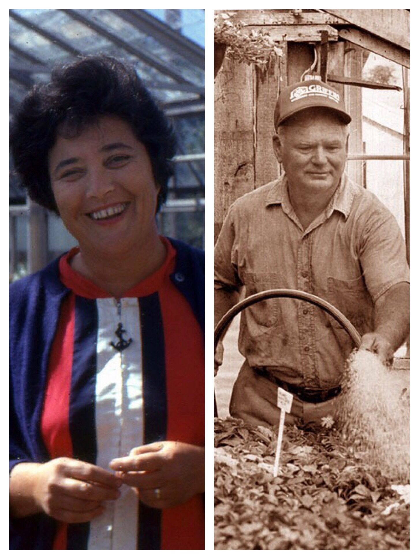 in the twentieth century - Raymond Peckham and his wife Clara continued the family farm, focused mainly on root vegetables. In the 1960s, their son Albert and his wife Mary Jane pushed the business towards house and garden plants. Their dedication proved fruitful, as the business grew and became a trusted name in the community for all things plants.