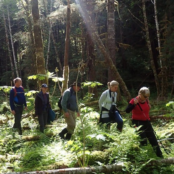 Testimonial_Travel_Alaska_Hiking.jpg