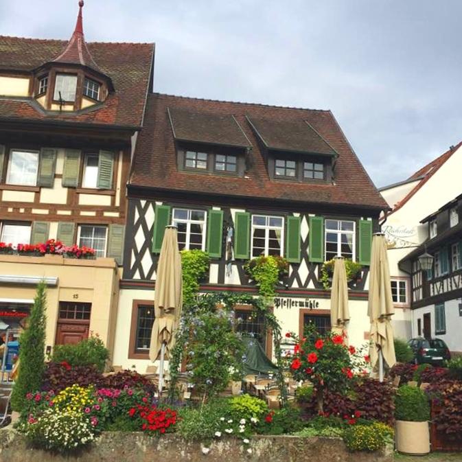 Travel_Testimonials_Rhine_River_Cruise_Cottage.jpg