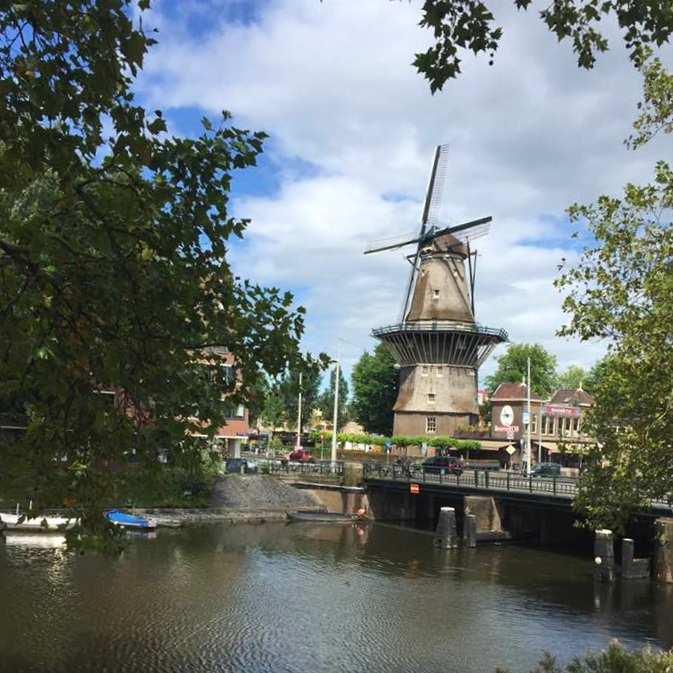 Travel_Testimonials_Rhine_River_Cruise_Windmill_1.jpg