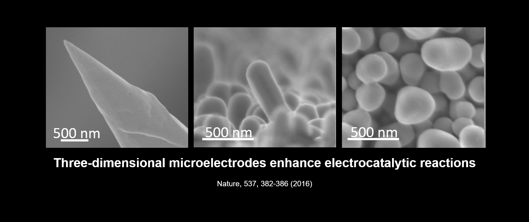 Microelectrodes.png