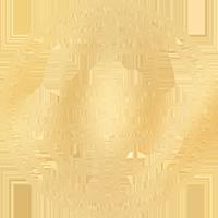 Anna Tsui Logo Element_200X200.png
