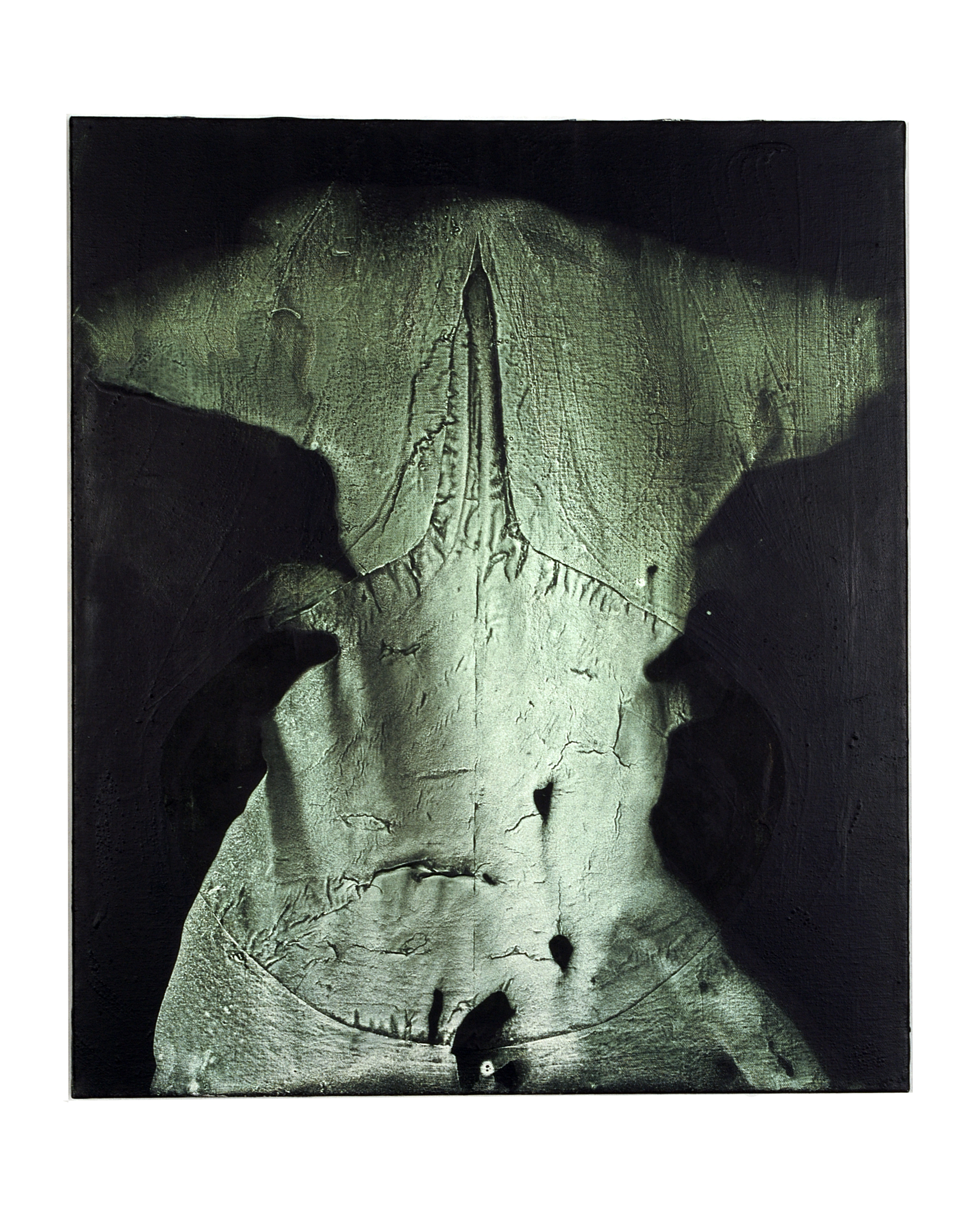 SoHyun Bae, Solitude Quietude Beatitude, 2004, acrylic on canvas, 80 x 60 cm