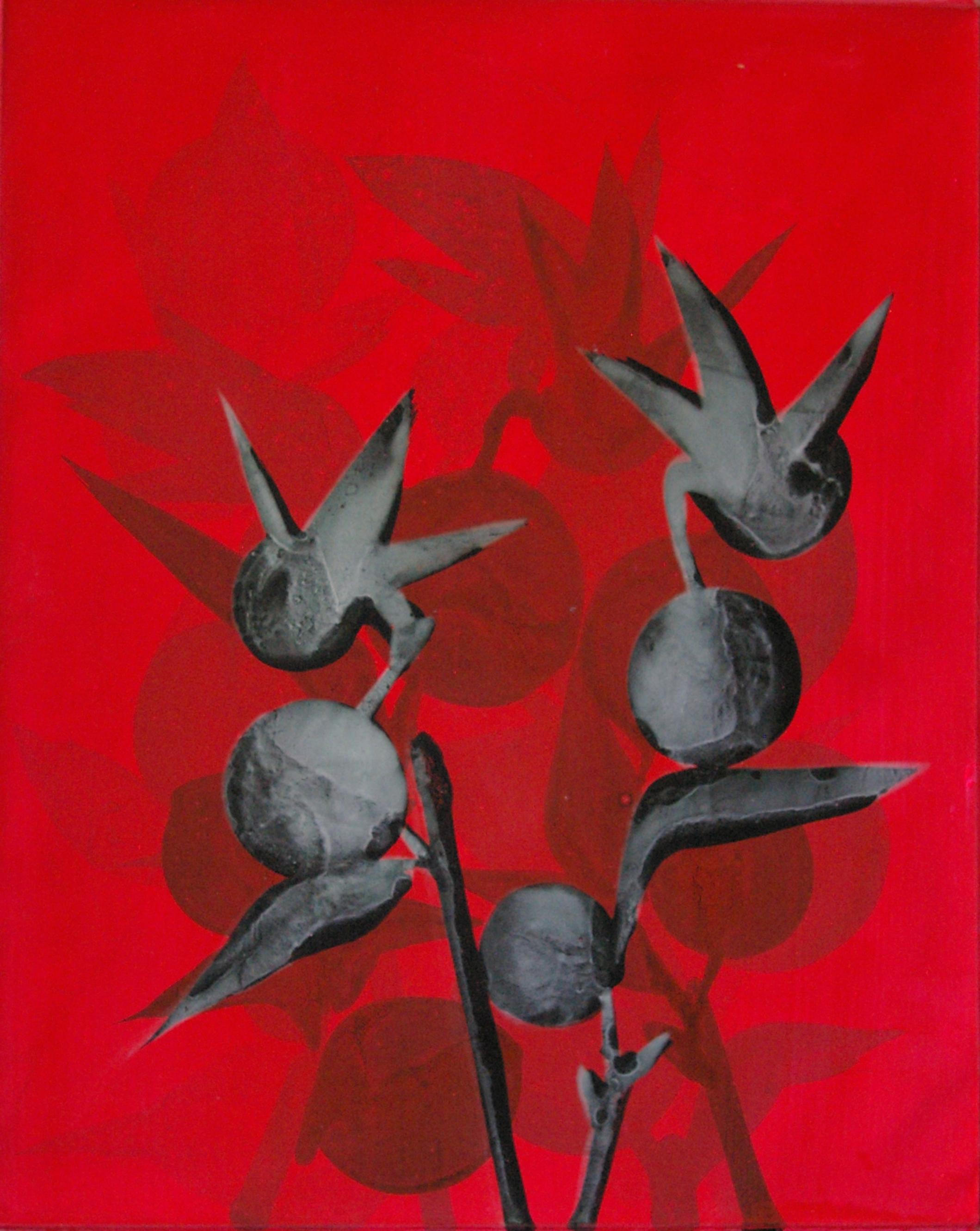SoHyun Bae, Persimmons and Birds #2, 2007, acrylic on canvas, 80 x 60 cm