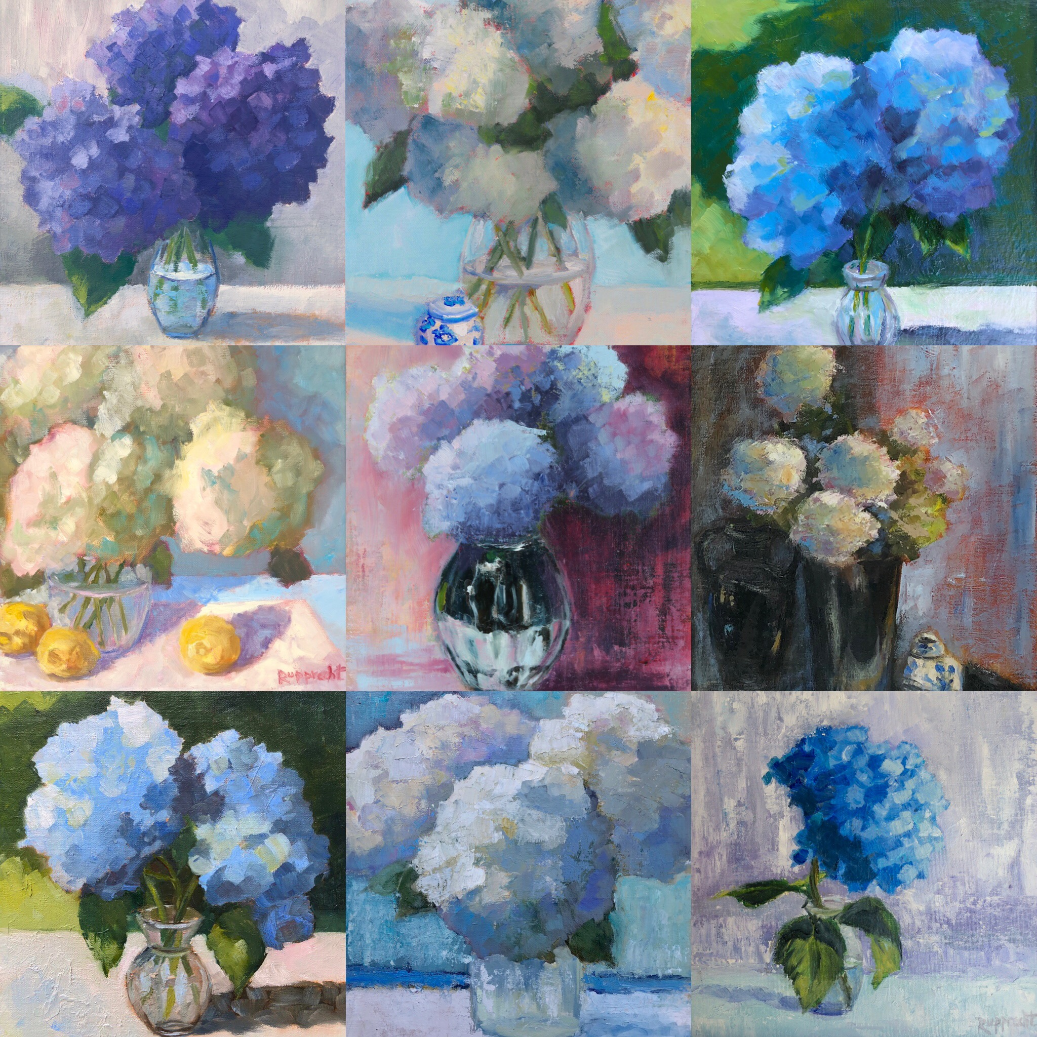 Examples of past hydrangea paintings by Jean Rupprecht