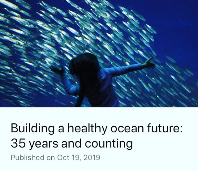 @montereybayaquarium continues to inspire and lead.... #nature #education #leadership #oceans https://www.linkedin.com/posts/kflitner_building-a-healthy-ocean-future-35-years-activity-6591656922347384832-9Dgw