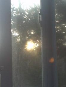 spring-sun-227x300.jpg