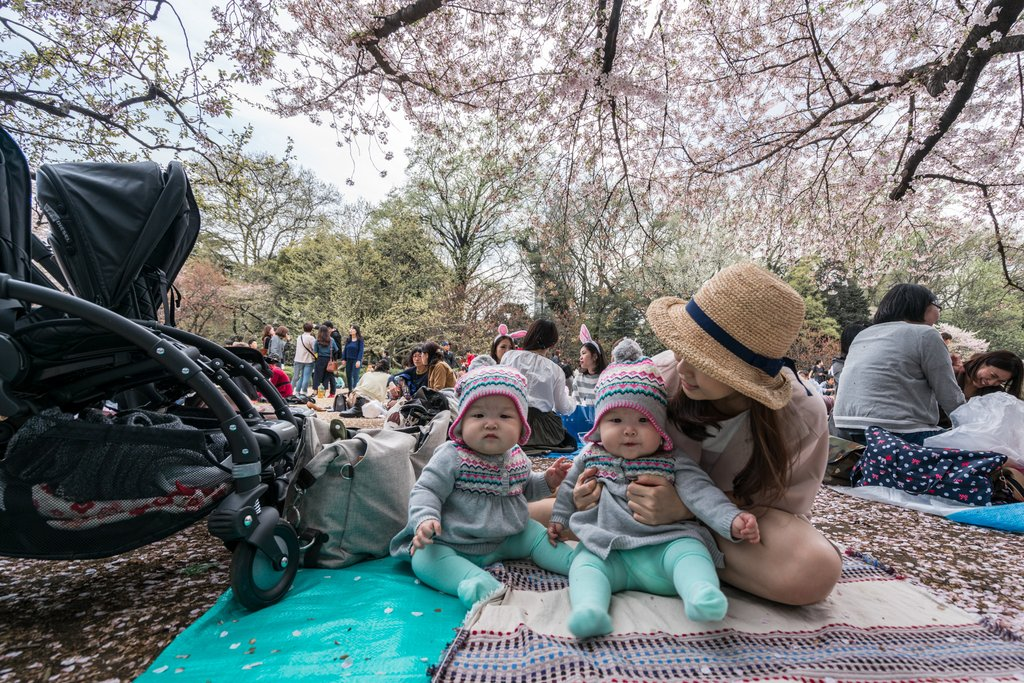 Found ourselves a nice and cosy spot for an afternoon picnic under the cherry blossom trees at Shinjuku Gyoen National Garden.
