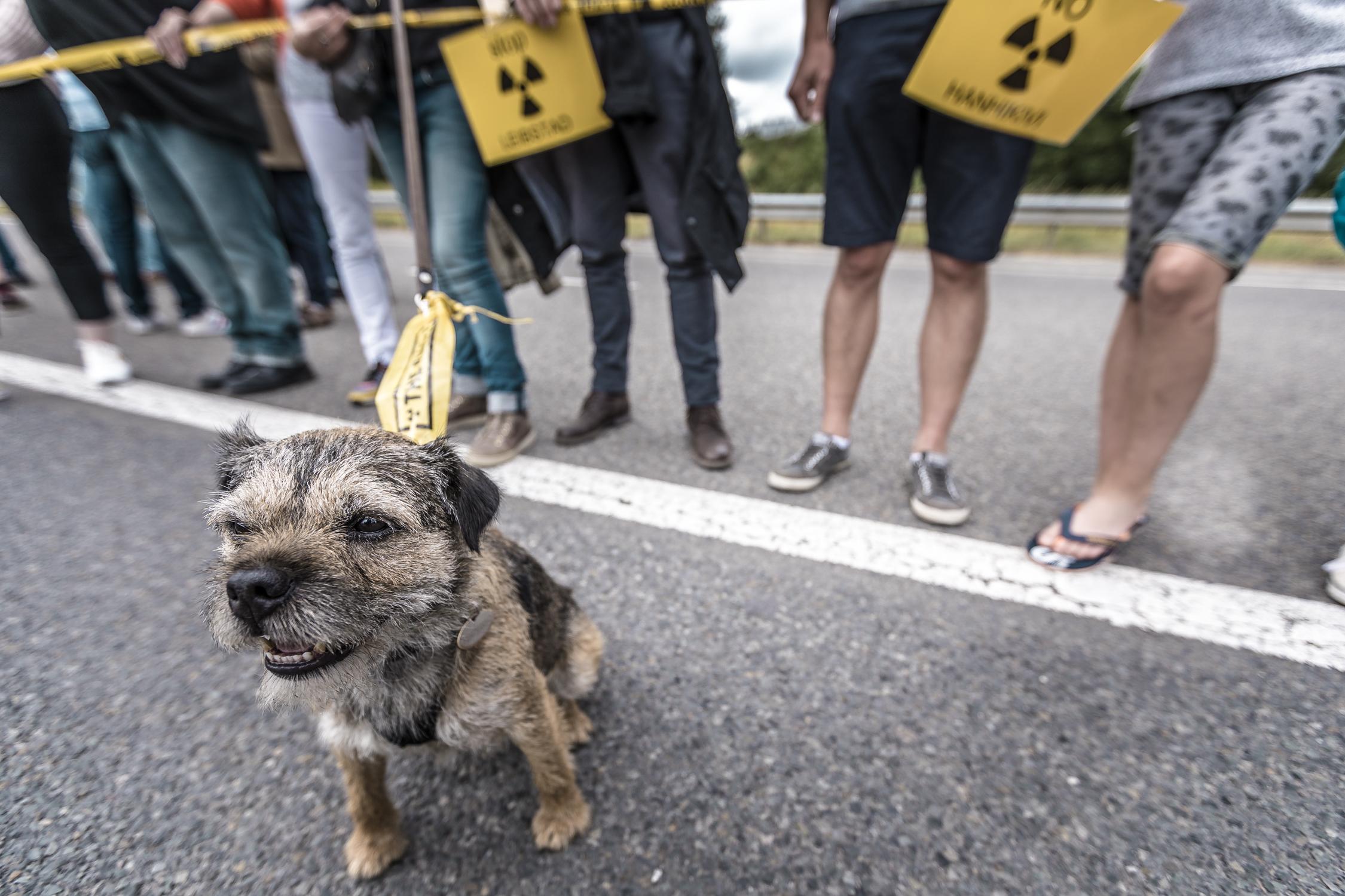 Anti Nuclear Power Plants Protest, Tihange, Belgium