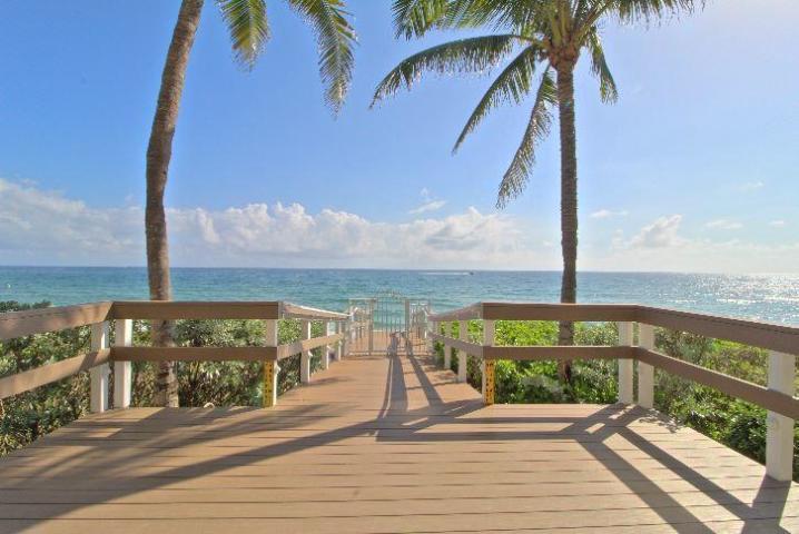 Noelle Mcintyre True Floridian Realty