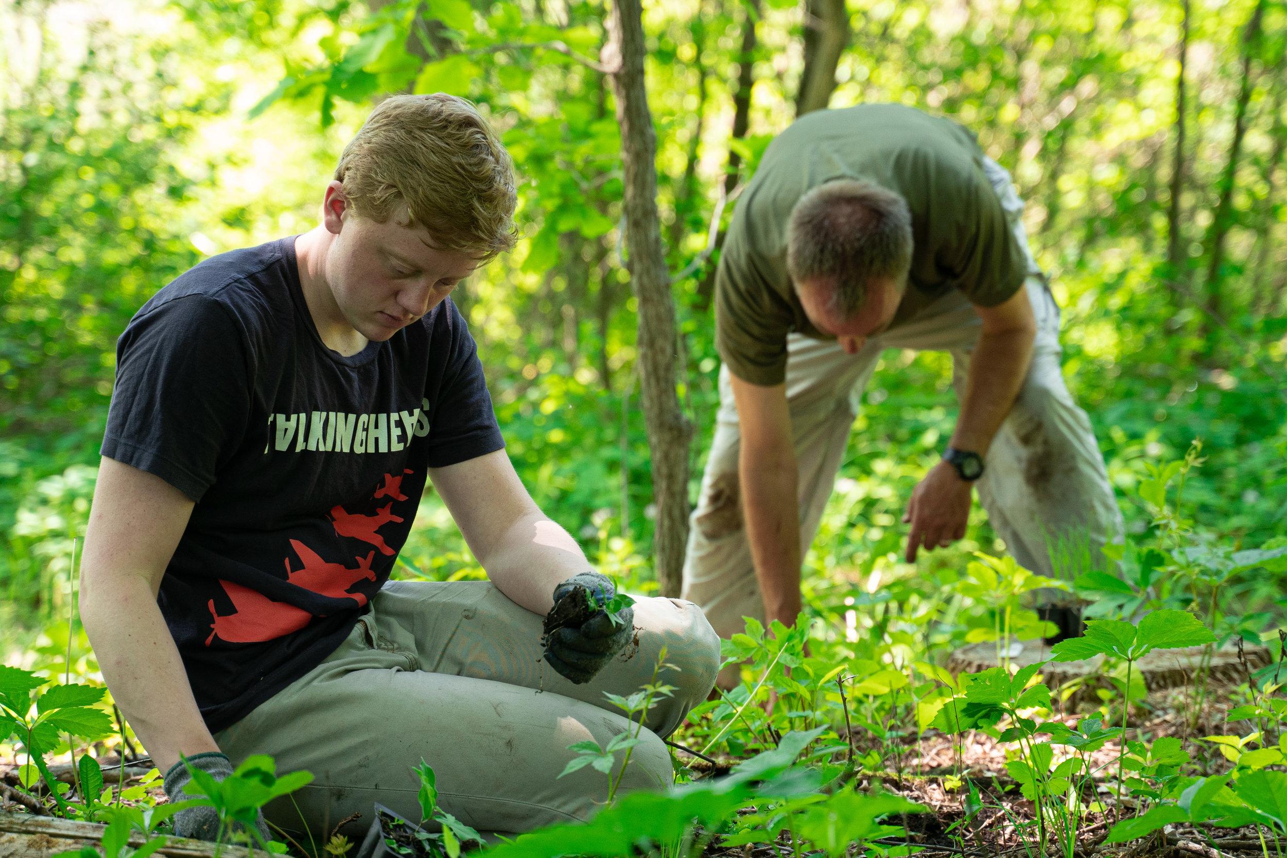 Woodland Conservation (2 of 9).jpg