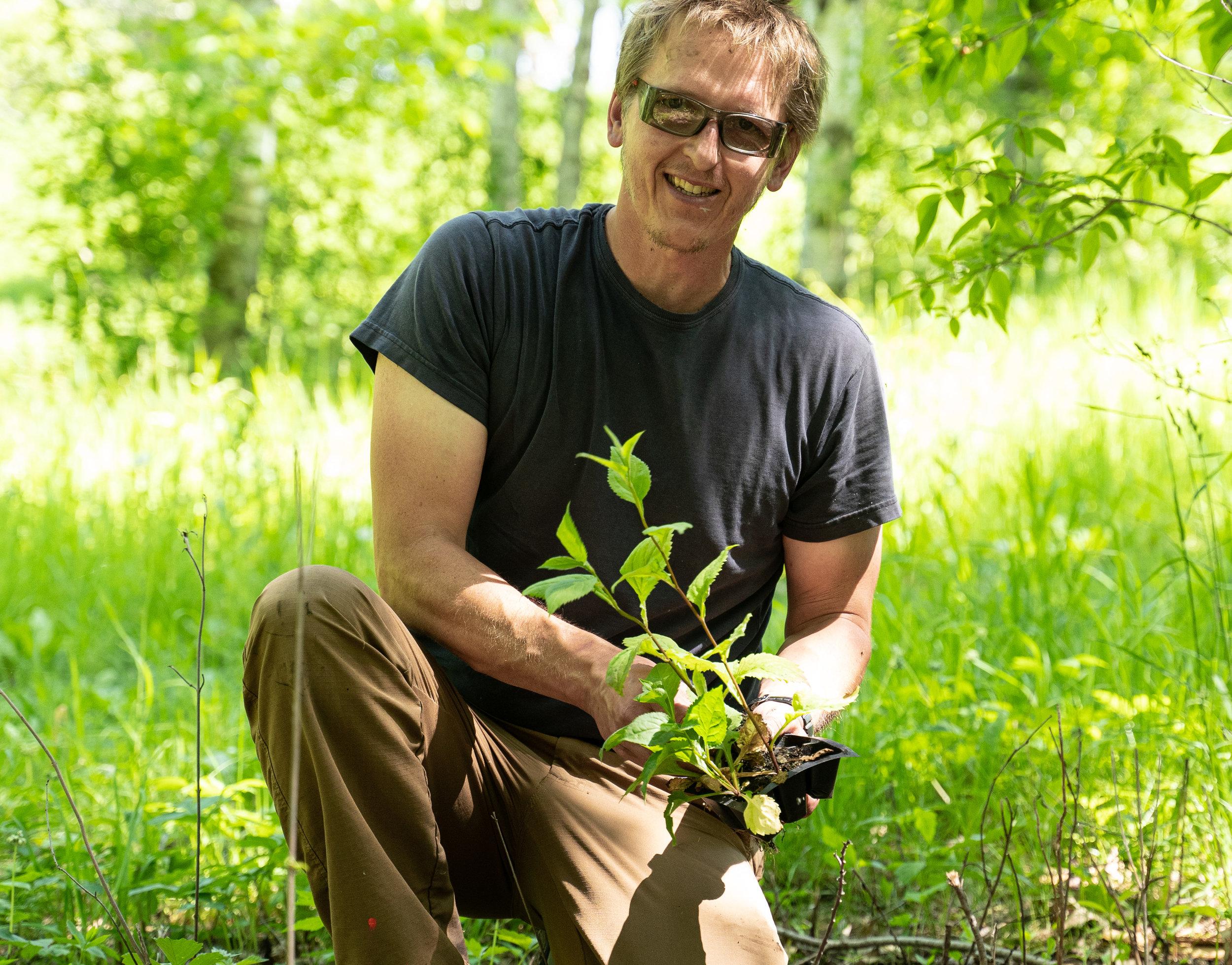 Woodland Conservation (5 of 9).jpg