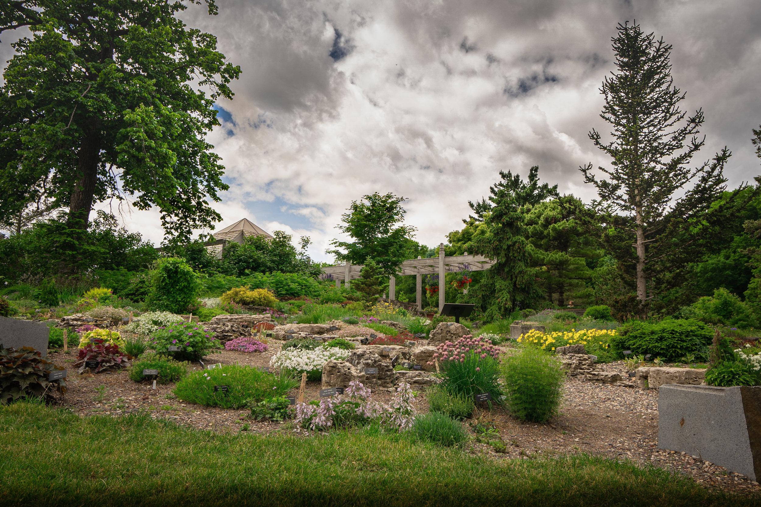 Rock Garden 4.jpg