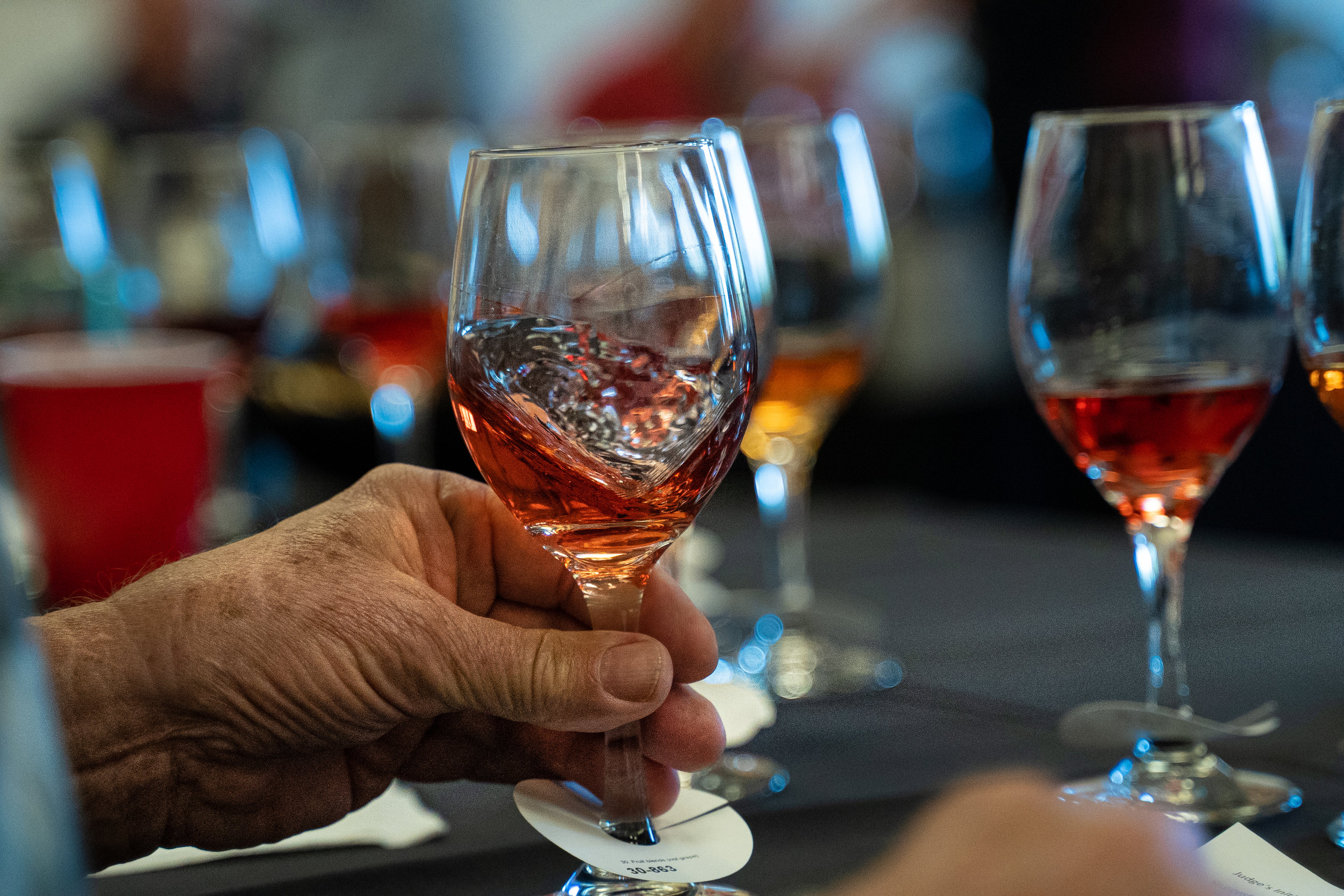 11th Annual North American Cold Hardy Wine Tasting I