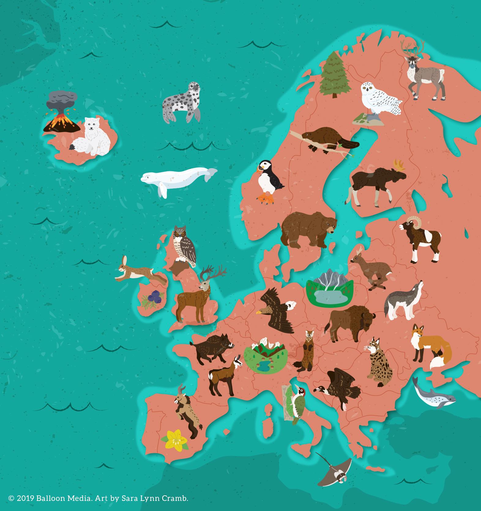 Animal map of Europe