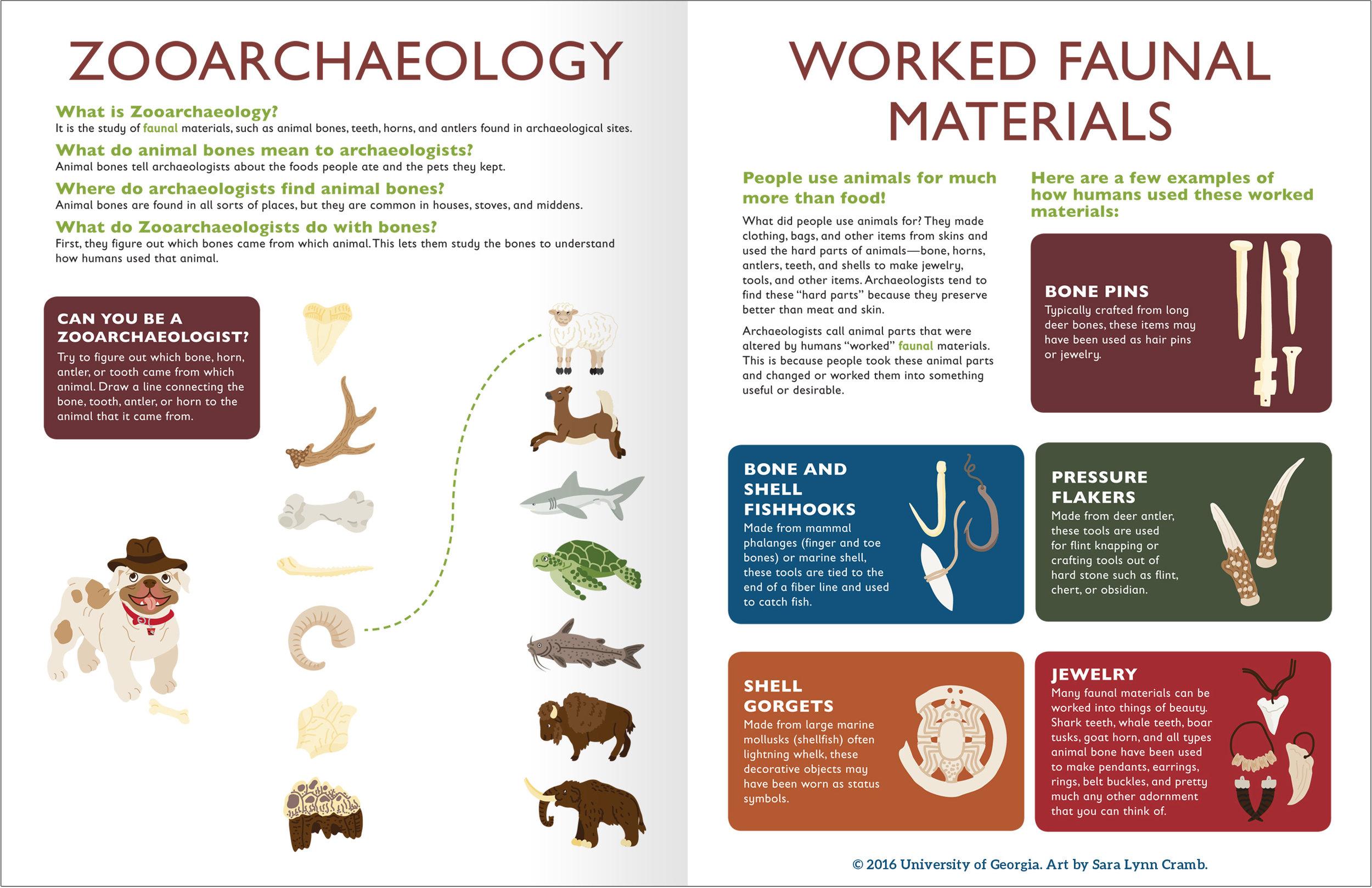 Zooarchaeology