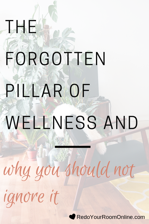 I've been hearing all the craze about wellness everywhere I turn, especially on social media. You know the 3 common pillars of wellness: mind, body and soul, but what's missing is the forgotten pillar of wellness: environment!
