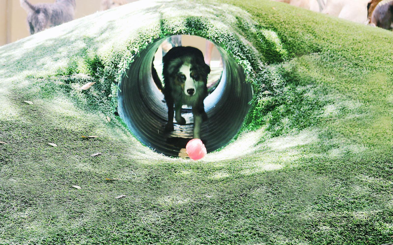 Underground Tunnel -