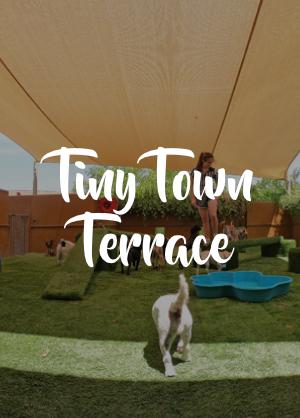Tiny Terrace.png