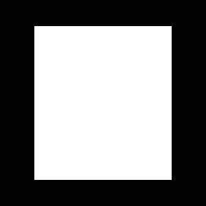 CSA.png