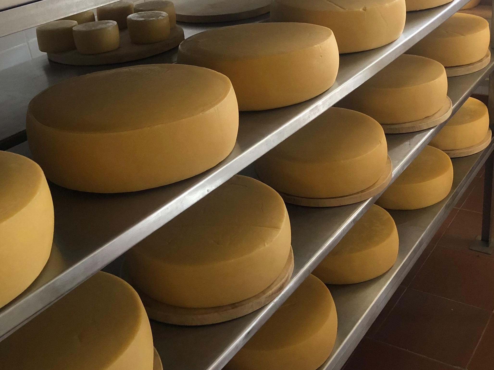 Beyond Latin America - We work with cheese companies in Europe and the US to access the growing market in Latin America and to create strategies to serve Spanish-speaking consumers around the world.
