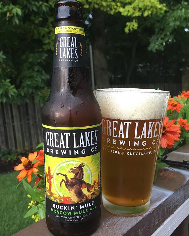@glbc_cleveland Buckin' Mule, Moscow Mule Ale . . 🧔🏻Allan: Pours a medium dark yellowish to light amber, white head with some sparse lacing. While I can't say the aroma is exactly like a Moscow mule, it is heavy with ginger and lime spice, malty rye.  The flavor is somewhat sweet but slightly crisp, with little to no hop notes. More ginger, with light notes of lime and rye. I think I can taste some cinnamon notes as well.  The finish is a little sweet and malty. I like the beer, however I think that some use of mint would help tie this in closer to a Moscow mule. . . 🙍🏽♀️Christina: It's not my thing. If I want a Moscow mule, I'll take with it vodka in a copper mug  6.5 ABV | 25 IBUs