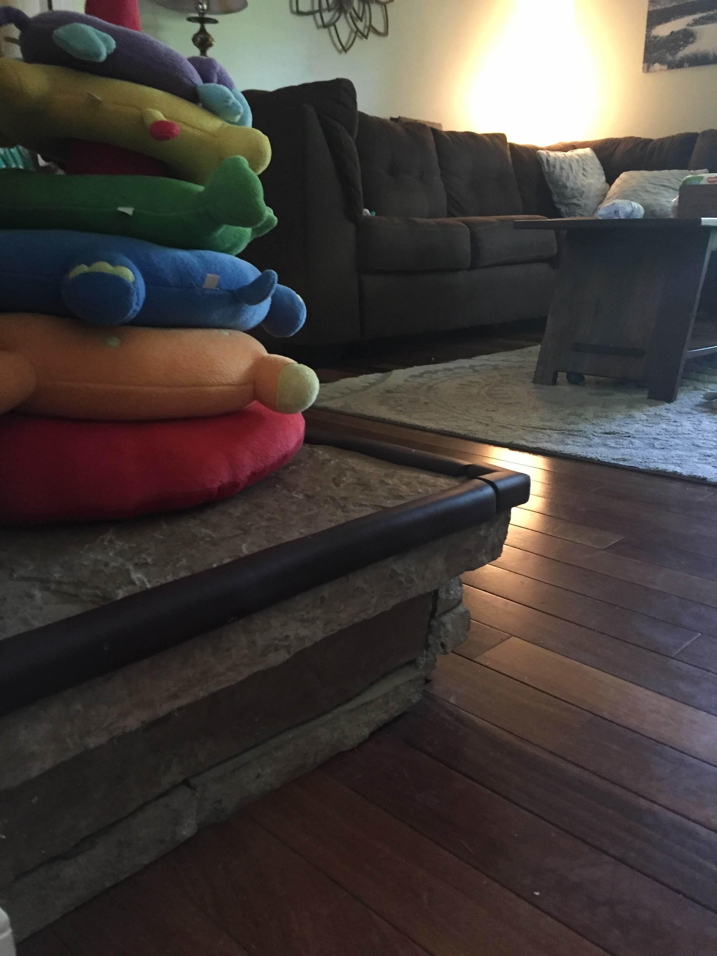 Asheville, North Carolina Family Vacation Rental Review