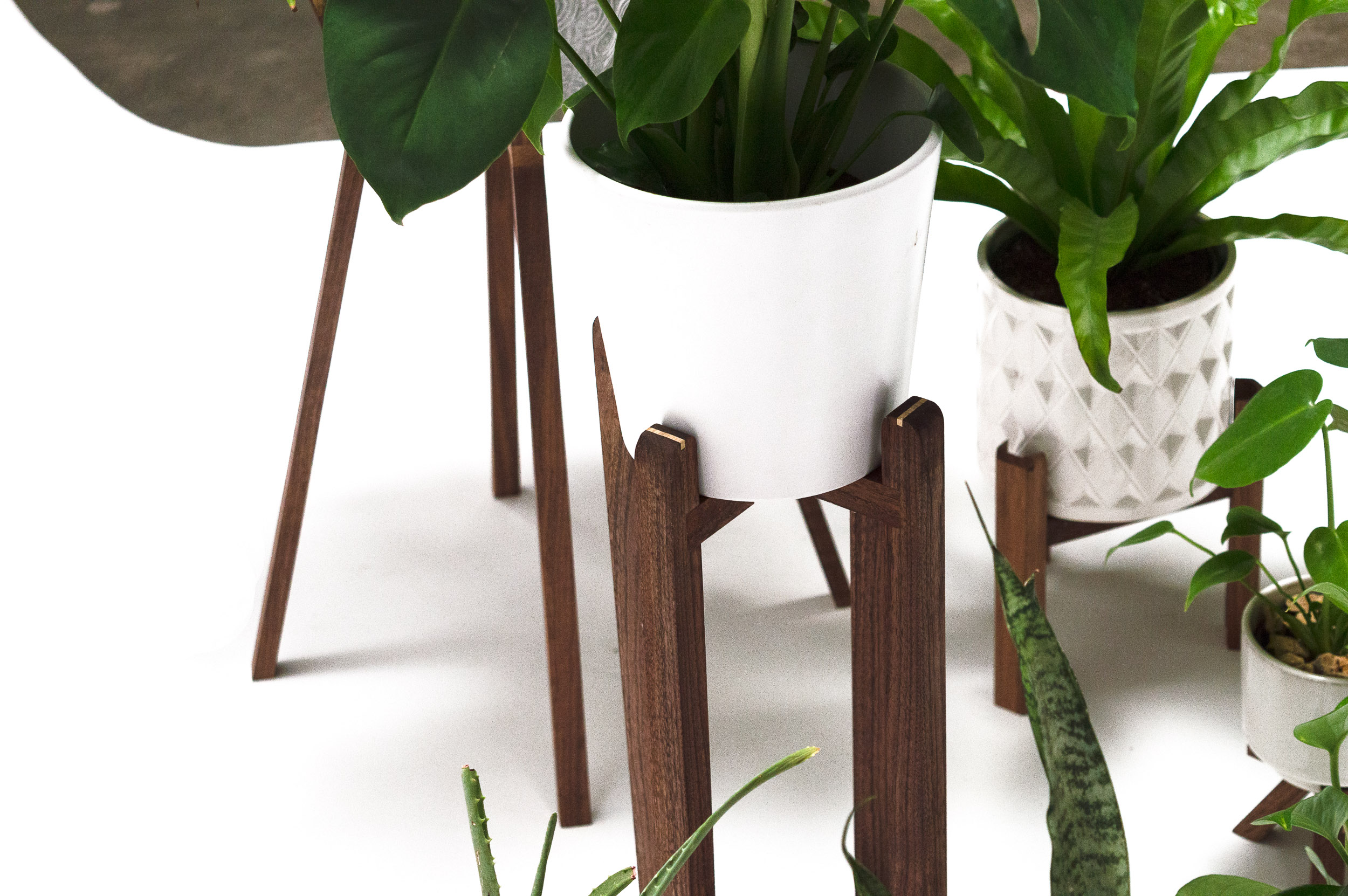 PLANT STANDS-3.jpg
