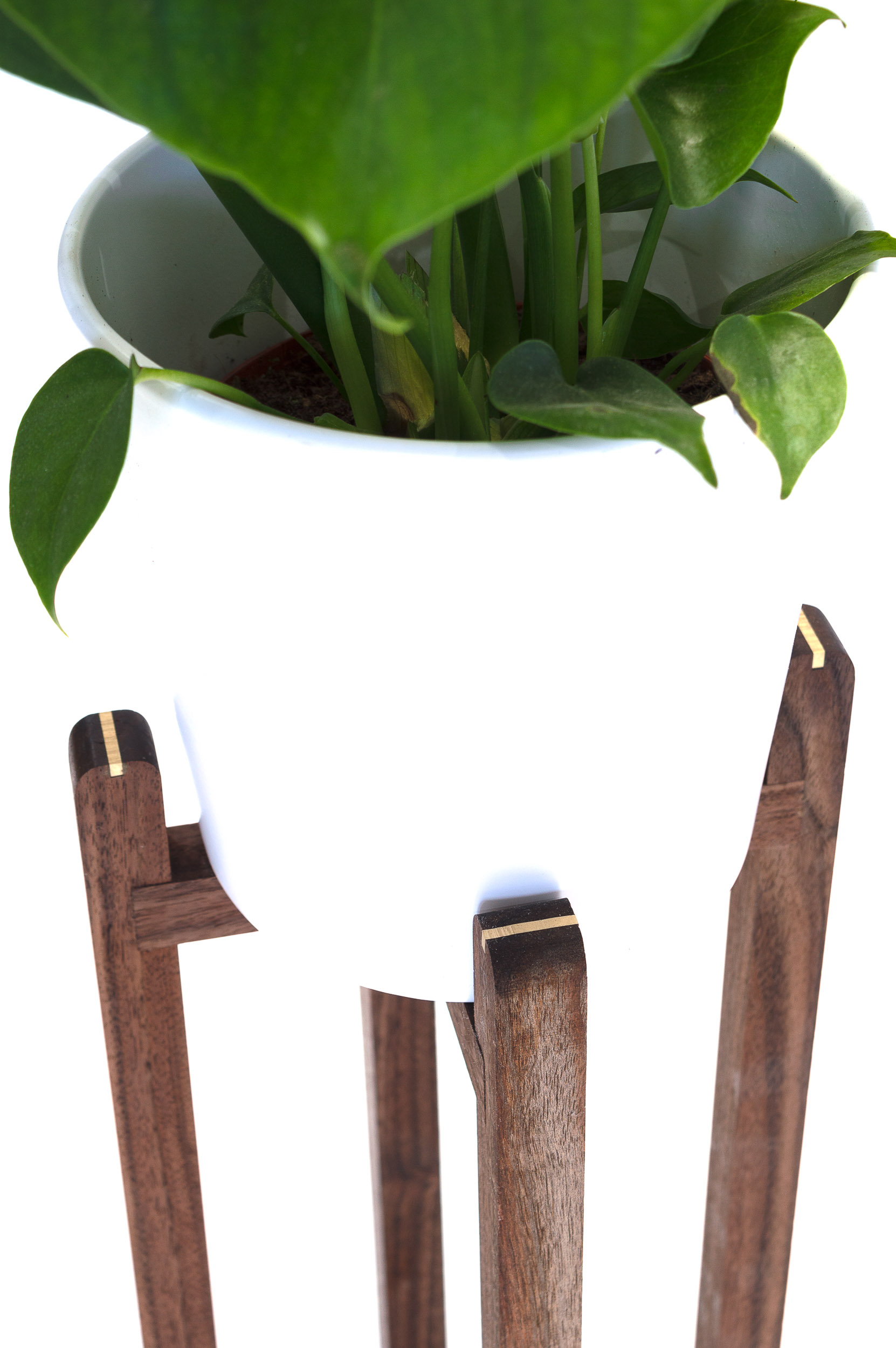 PLANT STANDS-6.jpg
