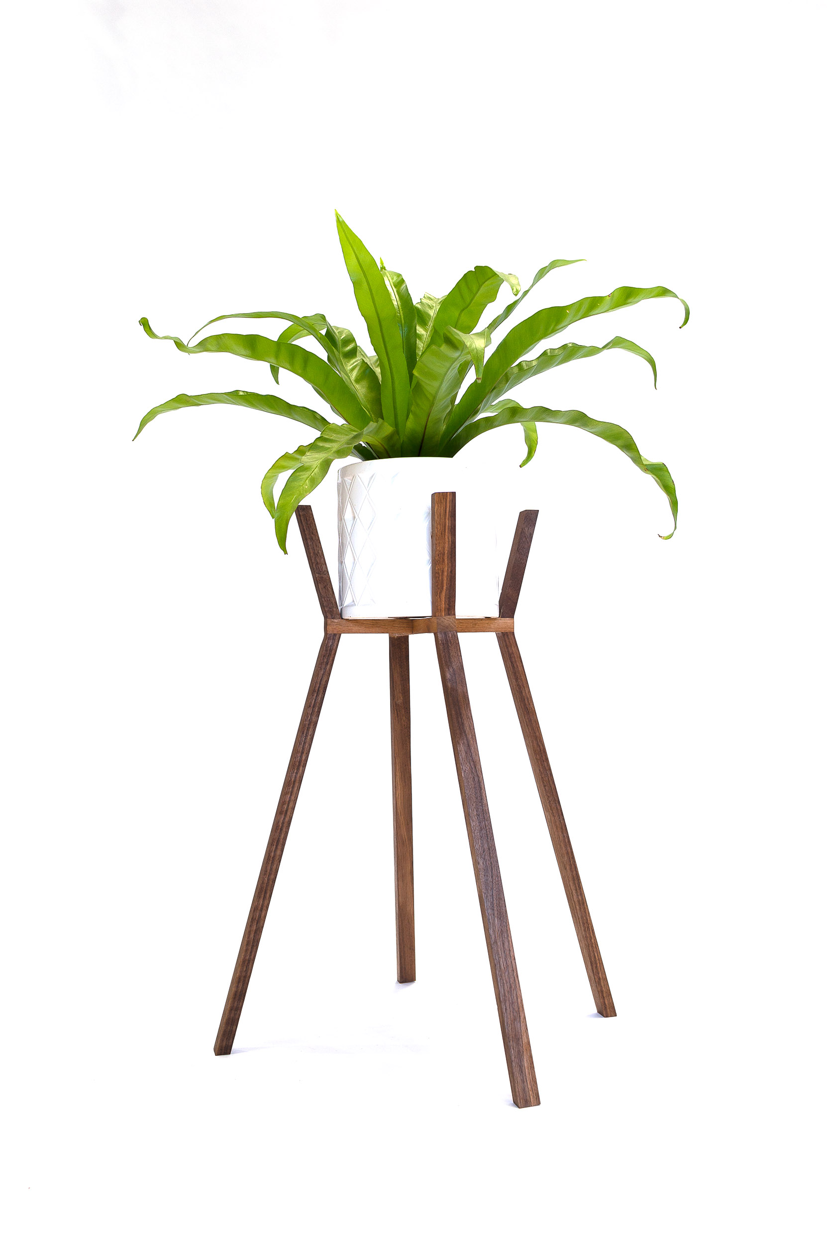 PLANT STANDS-8.jpg