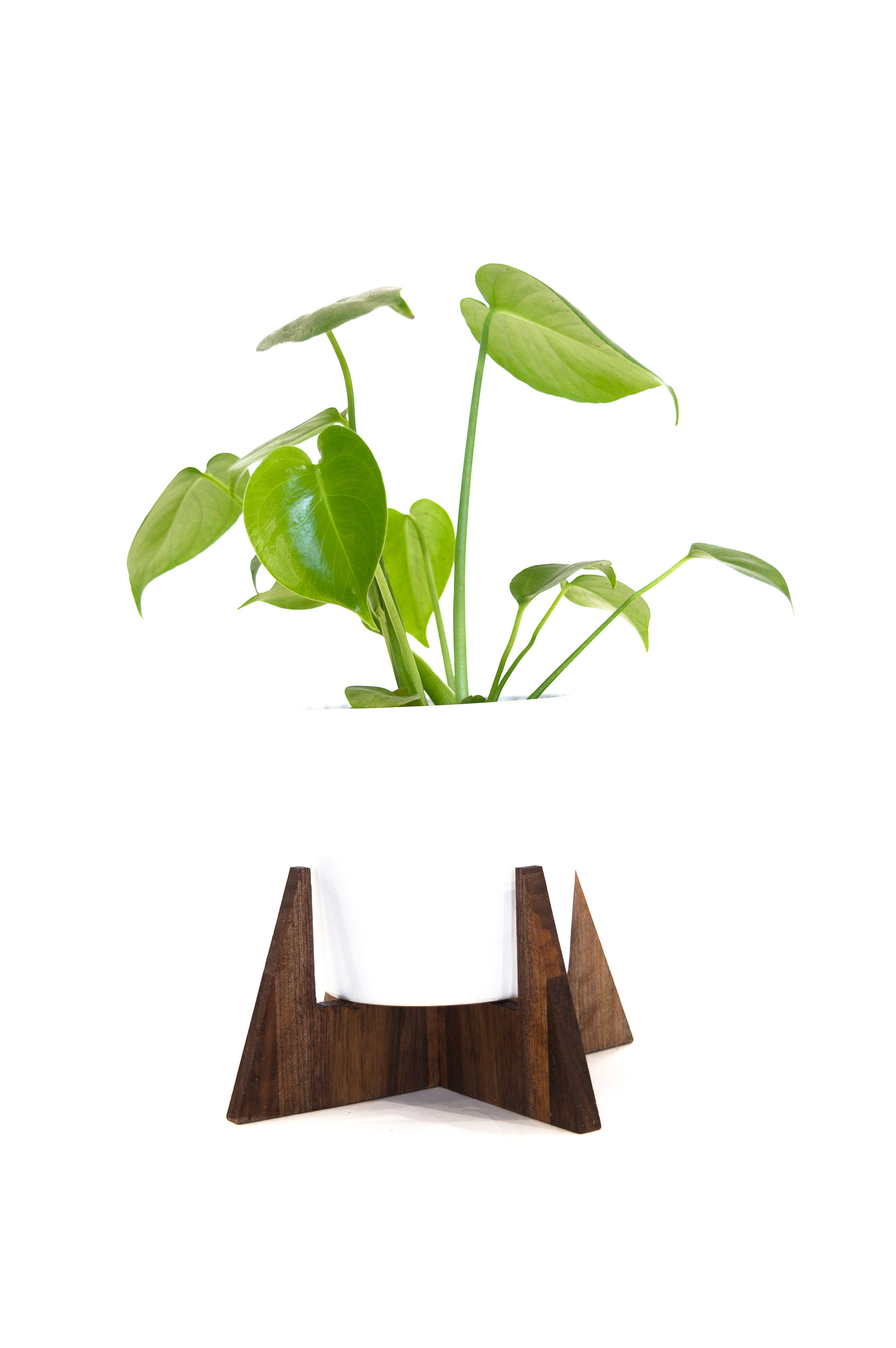 PLANT STANDS-20.jpg