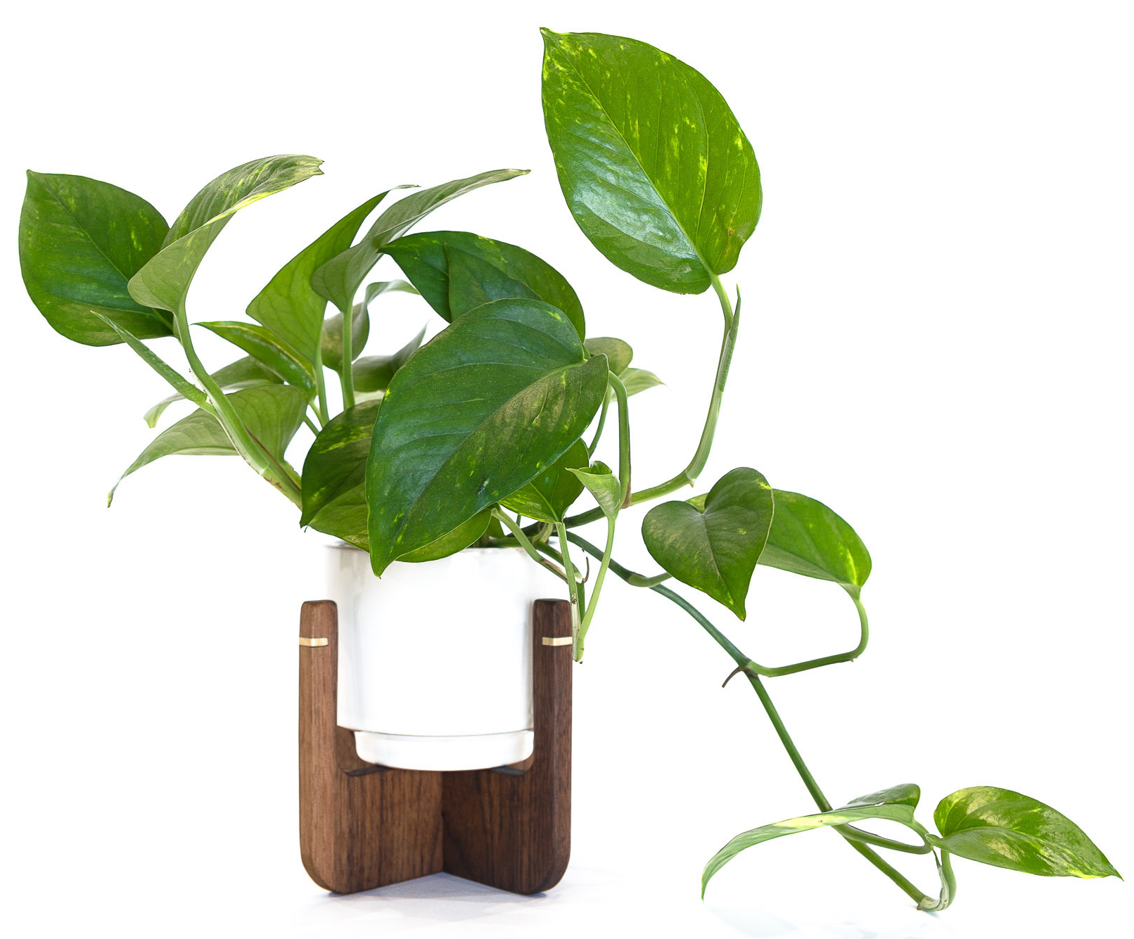 PLANT STANDS-22 copy.jpg