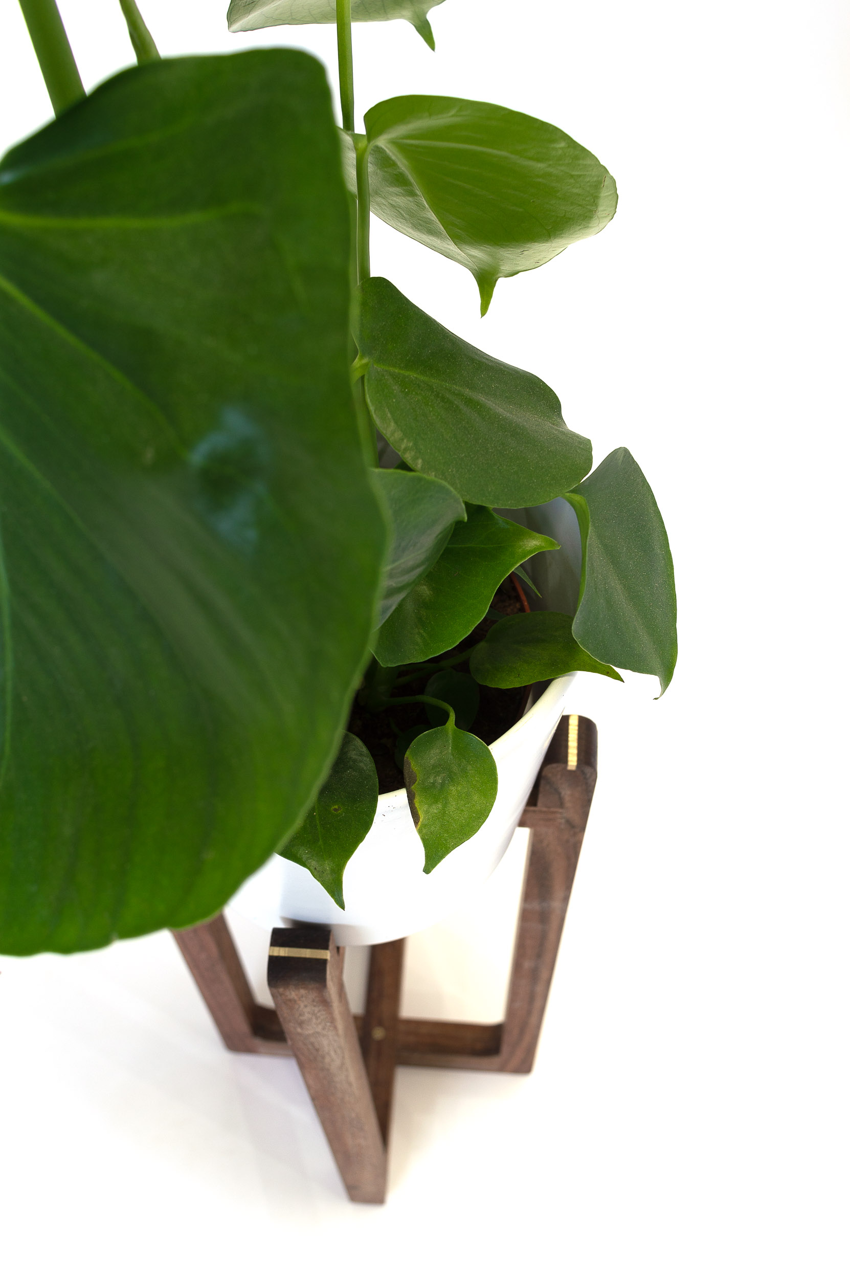 PLANT STANDS-5.jpg
