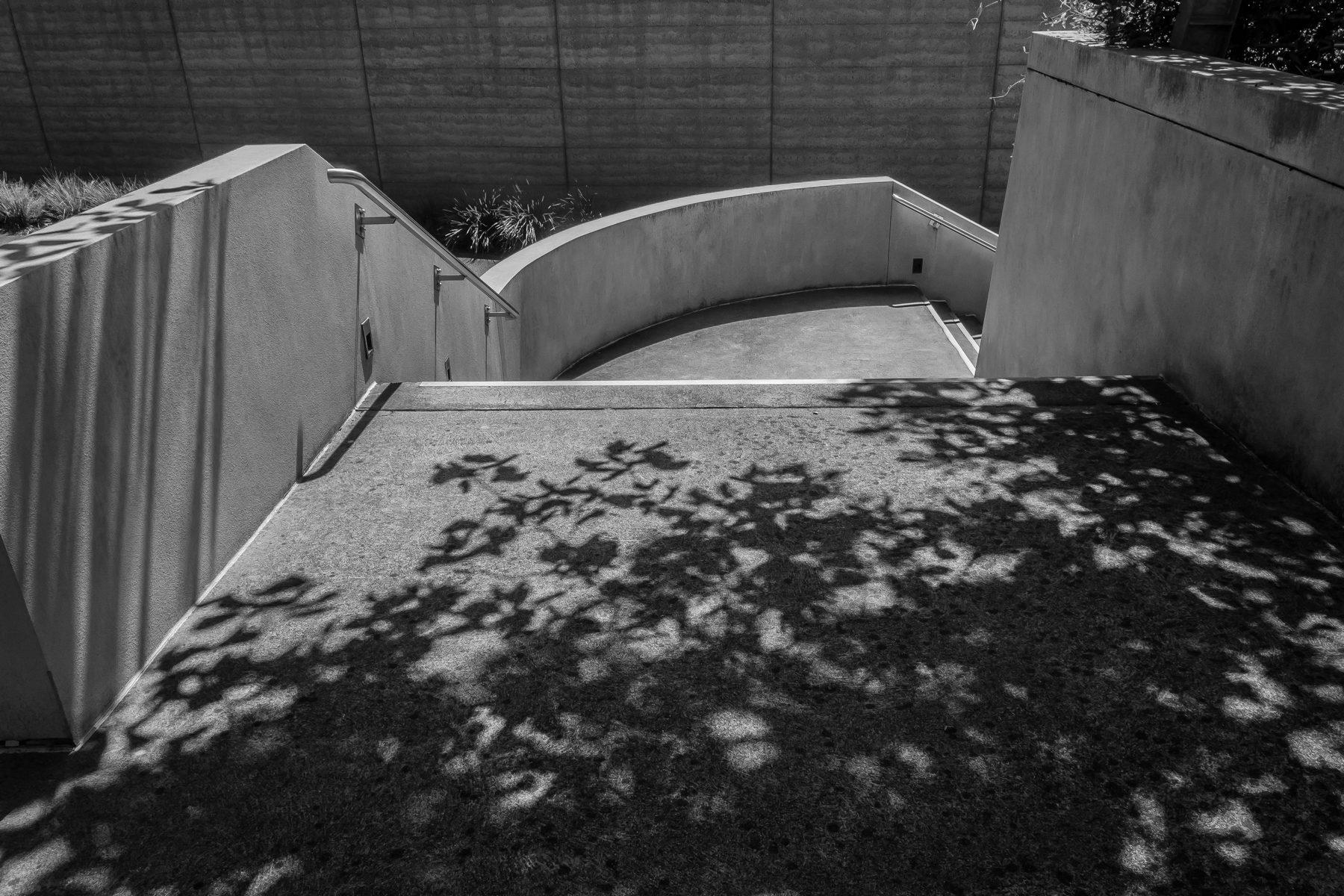 Tarrawarra Stairs.jpg