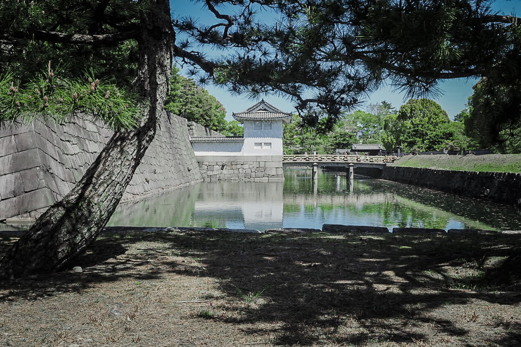 Nijojo Castle Moat, Landscape EDPI