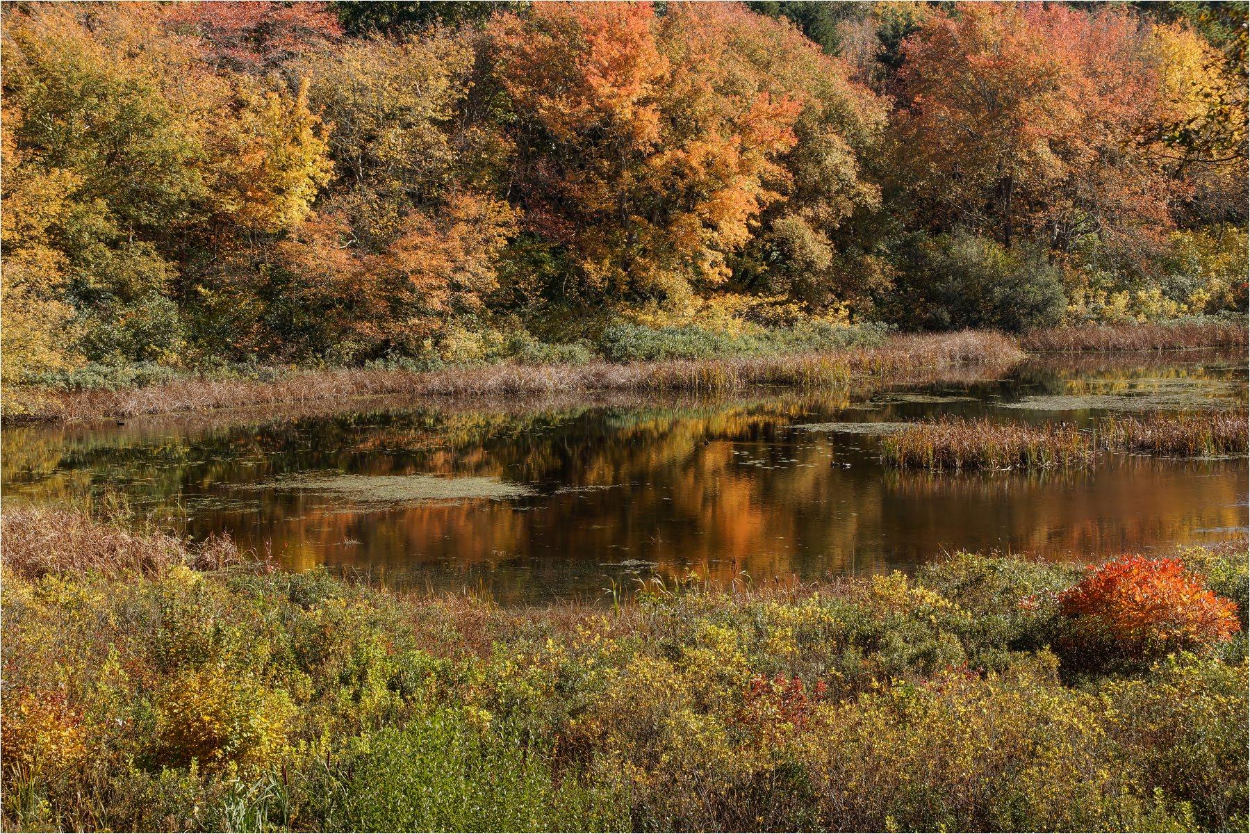 Autumn Rhode Island USA.jpg